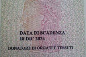 organi360 (1)