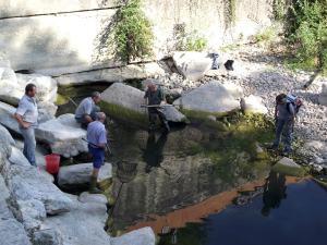 Salvataggio di pesci nel torrente Carza