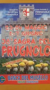 Firenzuola, Sagra del prugnolo @ Campo sportivo | Firenzuola | Toscana | Italia