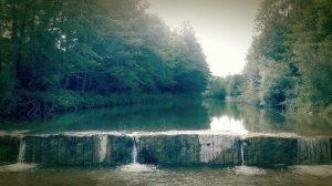 Santerno. Dalla-pietra,-all'acqua,-al-verde-foto di LUCREZIA-VIGNOLI