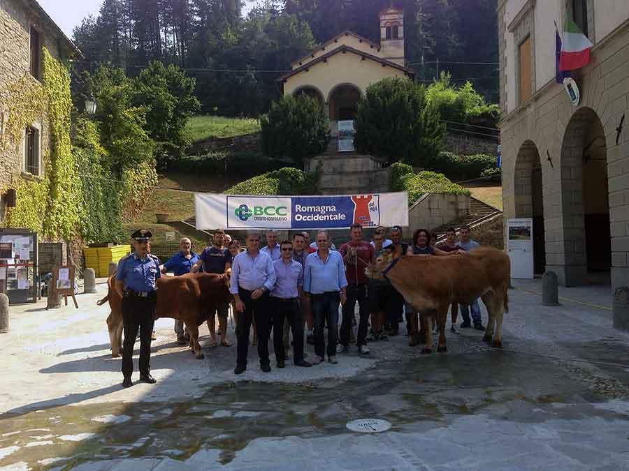 feria-agricoltura-bestiame-2015-palazzuolo-sul-senio