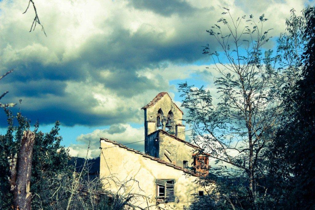 sm bovino - Foto Varlani (4)