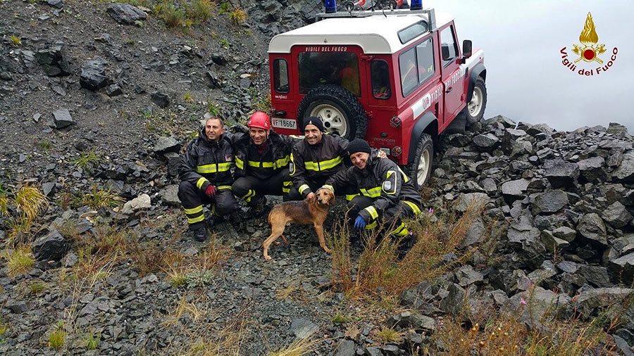 cane-salvato-vigili-sasso-di-castro-firenzuola-2015-4