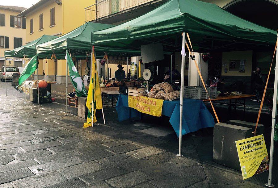 festa-pata-firenzuolina-2015-3