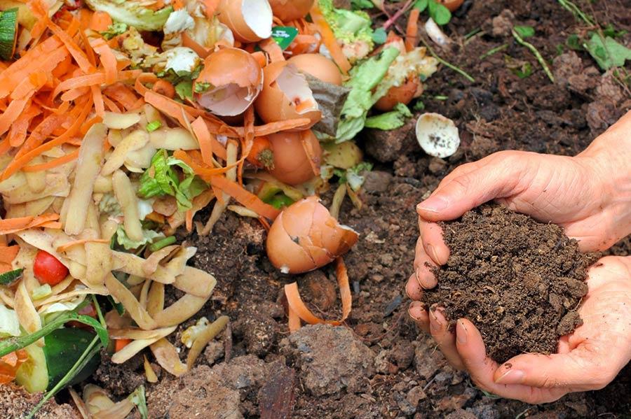 compost-terriccio-rifiuti-biologici
