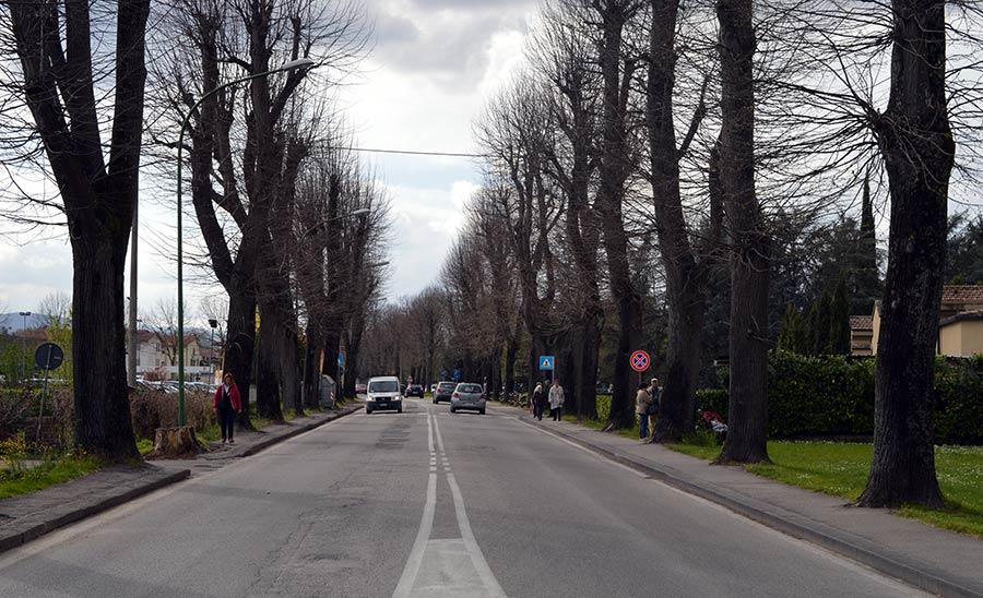 borgo-viale-giovanni-xxiii-2016