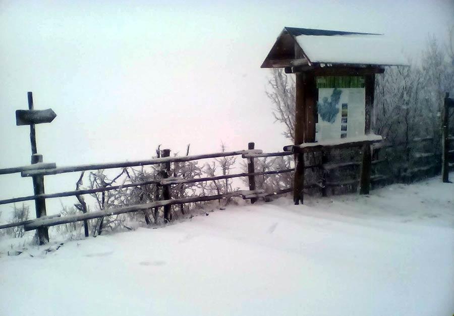Foto di questa mattina 9 marzo di Francesco Bagnuolo, Passo del Giogo