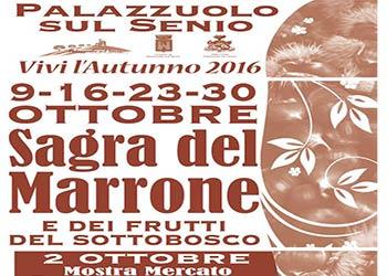 www.palazzuoloturismo.it