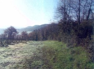 ambito-per-la-risalita-sul-monte-beccai-2