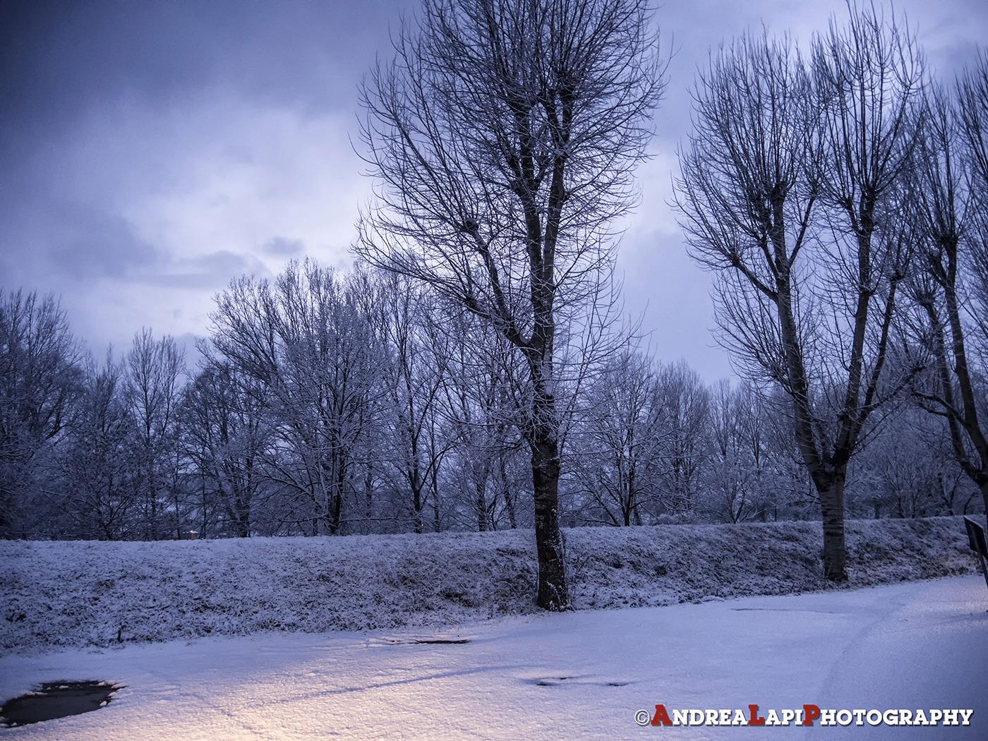 neve 17 gennaio borgo san lorenzo 2