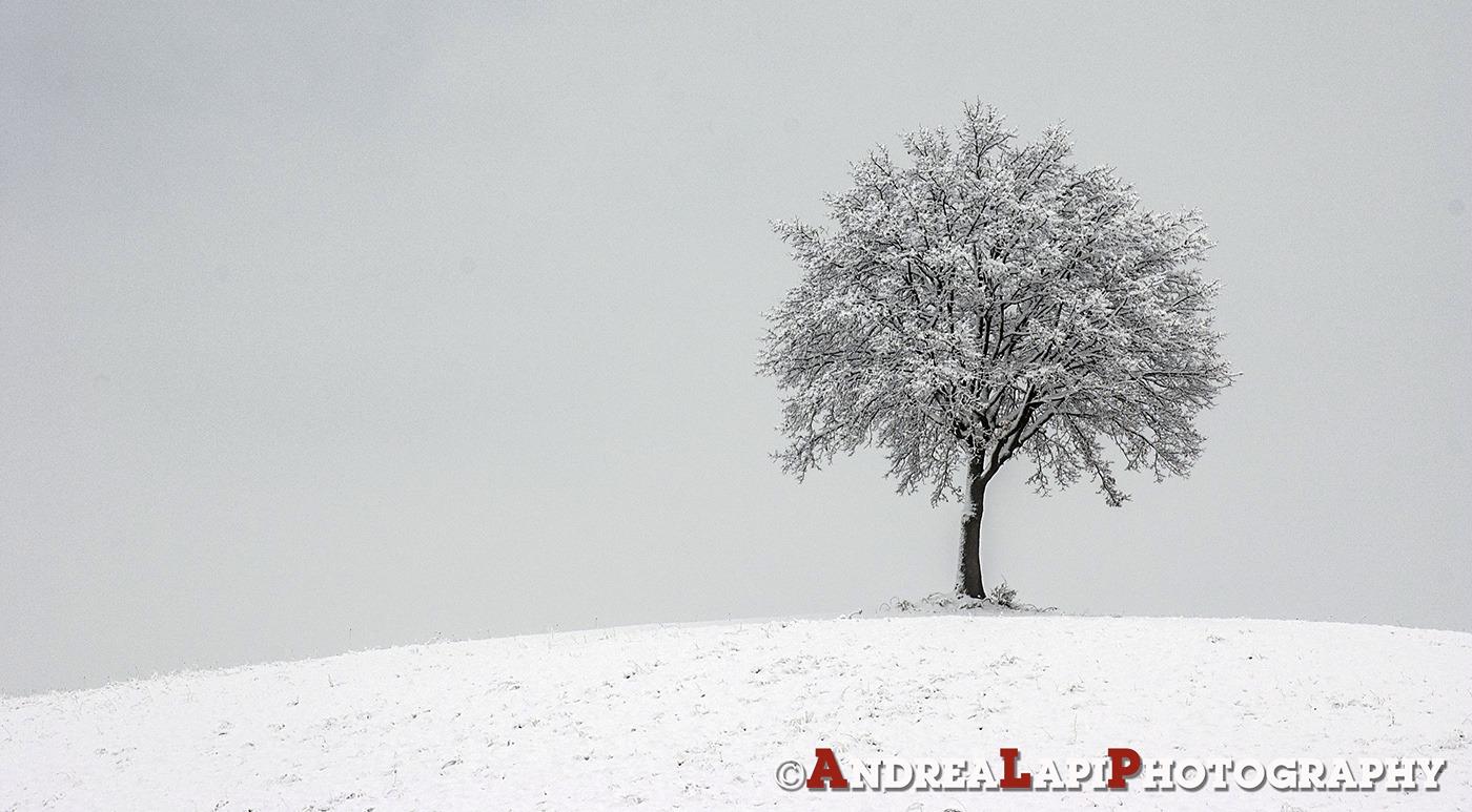 neve ghiaccio 1