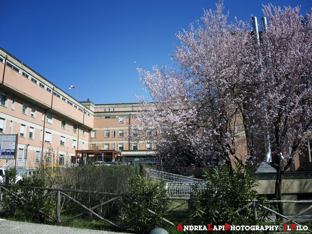 ospedale borgo con fiori 01
