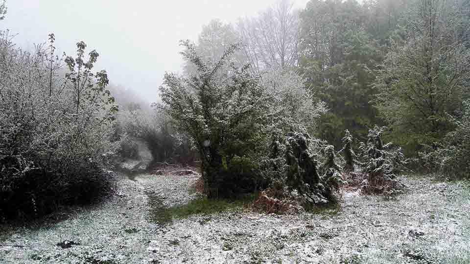 Neve-Aprile-Pietramala-