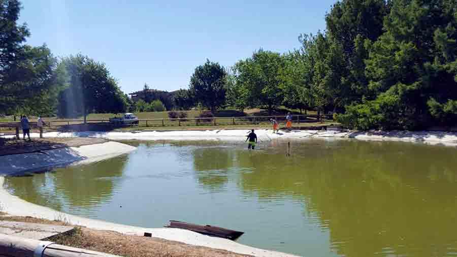 Pulizai-lago-parco-misericordia-1