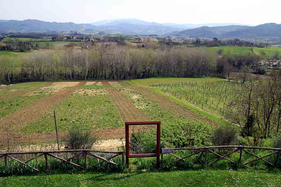 Vespignano_Panorama