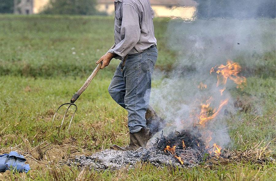 divieto-di-abbruciamento-residui-vegetali-contadino-fuoco-incendio
