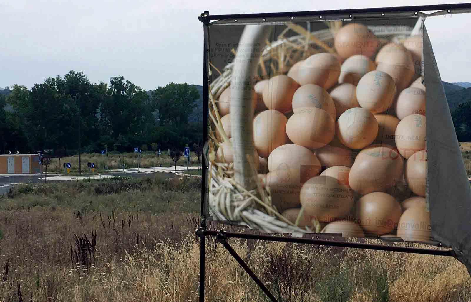 petrona-uova