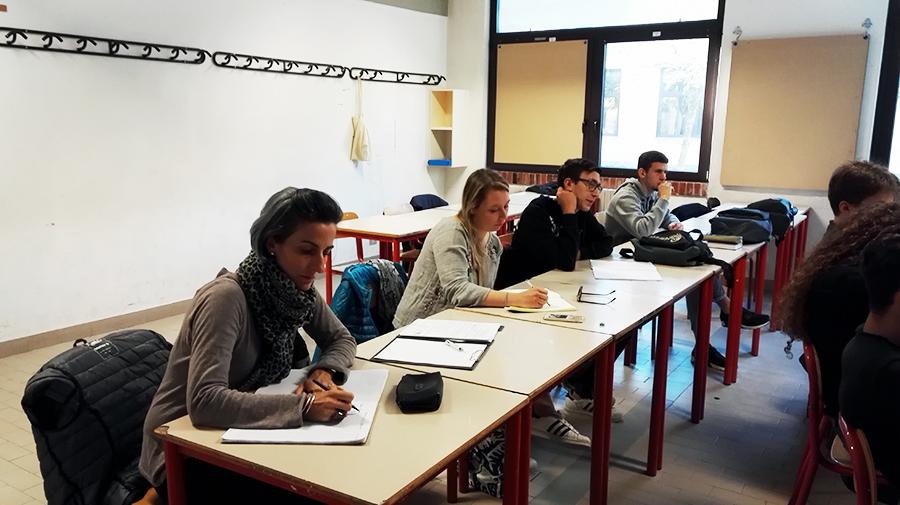 Erasmus-Francia-Giotto-Ulivi-4