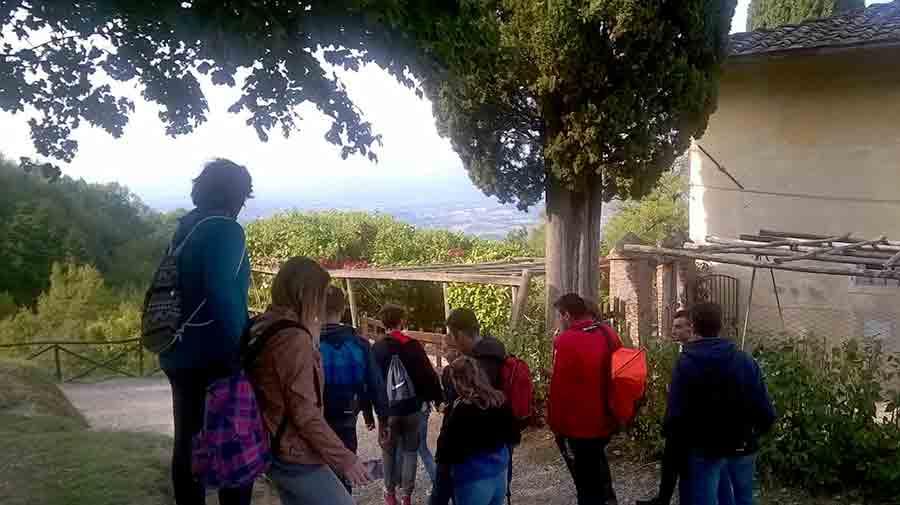 Gita-Barbiana-Giotto-Ulivi-