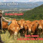 Borgioli-20